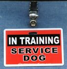 IN TRAINING SERVICE DOG clip optional ADA on back