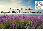 Soil Association Certified Organic High Altitude French Lavender 10ml to 100ml