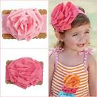 Mud Pie Summer Fun Light Pink or Hot Pink Flower Headband