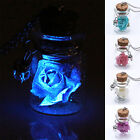 WELL New Glow In The Dark Flower Glass Tiny Wishing Bottle Vial Necklace Pendant