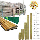 2FT 3FT 4FT 5FT 6FT 7FT BAMBOO GARDEN CANES STRONG THICK QUALITY PLAIN SUPPORT