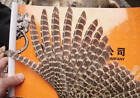 R/L BARRED PHEASANT PRIMARY FEATHERS/ARROW MAKING/Wholesale Amounts