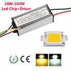 10W 20W 30W 50W 100W Waterproof LED Driver Power Supply + SMD Chip Bulb