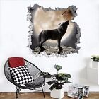 3D Howling Wolf 293 Wall Murals Wall Stickers Decal Breakthrough AJ WALLPAPER AU
