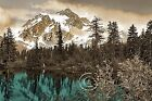 Mountain Majesty - Teal Brown/Gray Forest Home Decor Picture Teal Wall Art