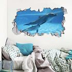 3D Ocean Dolphins 1 Wall Murals Wall Stickers Decal Breakthrough AJ WALLPAPER AU