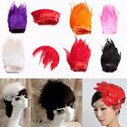 30cm/1m Hackle Feather Fringe Trim Sewing Costume Millinery Wedding Craft Decor