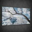 WHITE INFRARED TREES BLUE LAKE LANDSCAPE BOX CANVAS PRINT WALL ART PICTURE