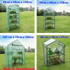 New Green House Portable Greenhouse Indoor Outdoor Plant Flower Garden Balcony #