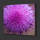 PINK FLOWER CLOSE UP MODERN DESIGN BOX CANVAS PRINT WALL ART PICTURE PHOTO