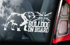 Bulldog on Board - Car Window Sticker -British English Bully Dog Sign Decal -V01