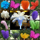 10/50pcs Mixed Colors Wedding Decor  Natural Ostrich Feathers 6-22inch/15-55cm