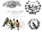Vintage Image French Birds Labels Furniture Transfers Waterslide Decals MIS637