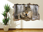 Wolf In The Snow Nature Wildlife Wall Sticker Wall Mural (12013462) Wolves Art