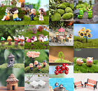 Внешний вид - DIY Mini Miniature Fairy Garden Ornament Decor Pot Craft Dollhouse Accessories