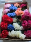 144 Wedding Flowers Carnations Buttonhole Funeral Tribute Silk Artifical On Stem