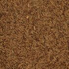 The Spice Lab No. 5123 - Whole Caraway Seeds - Kosher Gluten-Free Natural Spice