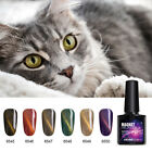 10ml cat eye magnetic nail gel soak