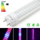 60WT8 Tube LED Grow Light Full Spectrum LED Bar Indoor Plant Flowering Grow Lamp