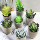 Artificial Potted Succulents Plants Green Fake Cactus Alow Bonsai Home Decor B7