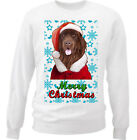 Newfoundland Santa snow- WHITE COTTON SWEATSHIRT