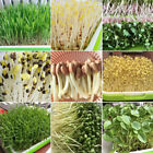17 species Sprouts,10 or 50 grams Sprouting seeds