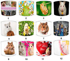 Kids Hamsters Design Lampshades, Ideal To Match Hamsters Wall Decals & Stickers.