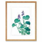 Blooming Hosta Ohara Koson Art Print Framed Poster Wall Decor