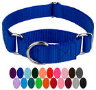 Country Brook Petz® Martingale Rugged No Buckle Nylon Dog Collar Collar