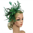 Fascinator Hat Lady's Day Feather Hair Clip Ascot Race Wedding Party Accessories