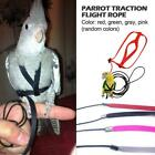 Parrot Bird Leash Adjustable Traction Harness Outdoor Training Rope Flying Band