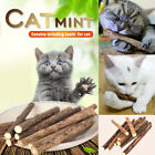 5pcs Pet Supplies Snack Cat Chew Stick Treat Toys Catnip Molar Pet Supplies