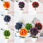 Gift Artificial potted plant Simulated Lifelike Fake Potted Indoor Outdoor