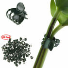 100 Plastic Plant Support Garden Flower Orchid Clips for Support Stems Stalks US