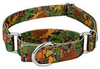 Country Brook Petz™ Southern Forest Camo Martingale Dog Collar