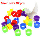 100PCS PLASTIC BIRDS POULTRY DUCK PIGEONS PARROT LEG FOOT BANDS CLIP RINGS SMART