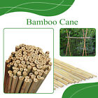 Strong Heavy Duty Professional Bamboo Plant Support Flower Garden Canes 2ft- 8ft