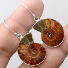 Fossil Ammonite - Madagascar 925 Sterling Silver Earrings Jewelry SDE21801