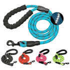 Collar Chest Strap Puppy Training Dog Nylon Leash Pet Traction Rope Pet Leads