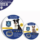 Accessories Anti Insect Flea Tick Collar Prevention For Pet Dog Cat Mosquitoes