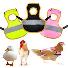Pet Reflective Vest Chicken Duck Clothes Poultry Hen Saddle Apron  Protec Holder