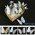 Room Accessories Crafts Butterfly Shape 3d Effect Diy Fridge Magnet Home Decor