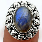 Blue Labradorite - Madagascar 925 Sterling Silver Ring Jewelry s.8 0061