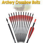 "12X Crossbow Bolts 16"" 18"" 20"" 22"" Carbon Arrows Archery Hunting With Target Tip"