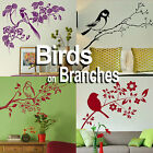 Birds On A Tree Branch Wall Stickers! Home Transfer Graphic Decal Decor Stencil