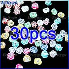 30x 3D Ceramic Rose Flower Clear Rhinestones For Nail Art Tips Decorations