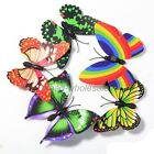 Colorful 10pcs 3D Butterfly Fridge Magnets Room Car Wall Decorations Magnetic