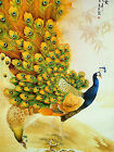 Japanese Peacocks Drawing - CANVAS OR PRINT WALL ART