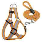 Step-in Safety Reflective Nylon Noctilucent Dog Puppy Harness&Leash Adjustable