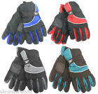 ADULTS MENS LADIES PADDED WATER RESISTANT PROOF WARM SKI GLOVES WITH PALM GRIPS